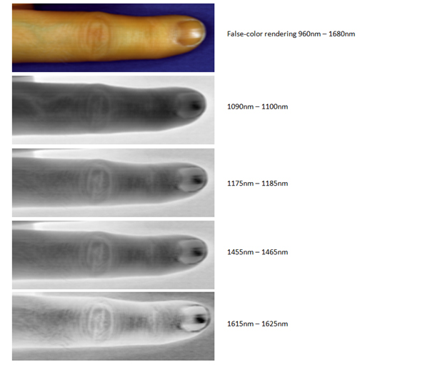 NIR hyperspectral data of a finger showing different features of interest located on separate spectral bands